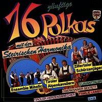Různí interpreti – 16 zunftige Polkas mit der Steirischen Harmonika