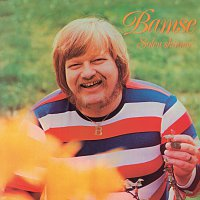 Přední strana obalu CD Solen Skinner