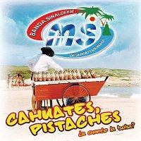 Banda Sinaloense MS de Sergio Lizárraga – Cahuates, Pistaches