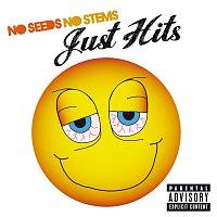 Různí interpreti – No Seeds, No Stems, Just Hits