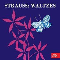 Různí interpreti – Strauss: Valčíky