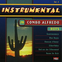 Combo Alfredo – 20 Hits - Instrumental - Vol. 3