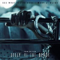 Přední strana obalu CD See What You've Done [From The Film Belly Of The Beast]