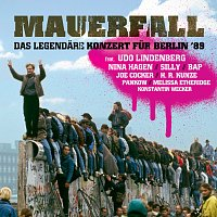 Různí interpreti – Mauerfall - Das legendare Konzert fur Berlin '89 [Live]