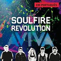 Soulfire Revolution – Aviva