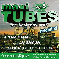 Gilles David Orchestra – Maxi Tubes - Vol. 5 - Reloaded