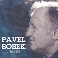 Přední strana obalu CD Pavel Bobek & pratele
