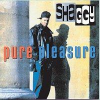 Shaggy – Pure Pleasure