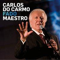 Přední strana obalu CD Fado Maestro