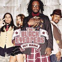 The Black Eyed Peas – Hey Mama