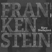 Lukáš Hlavica, Miroslav Táborský, Jiří Hromada – Shelleyová: Frankenstein (MP3-CD)