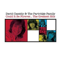 David Cassidy – Could It Be Forever - The Greatest Hits