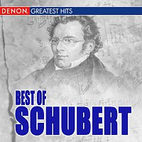Různí interpreti – Best Of Schubert