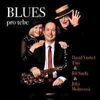 David Vrobel Trio, Jiří Suchý, Jitka Molavcová – Blues pro tebe