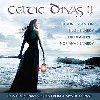 Různí interpreti – Celtic Divas, Vol. II