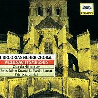 Přední strana obalu CD Gregorian Chant - Christmas Masses