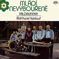 Malá dechová hudba Valdaufinka – Mládí nevybouřené