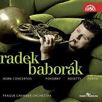 Přední strana obalu CD Pokorný, Rössler- Rosetti, Stich-Punto: Koncerty pro lesní roh a orchestr
