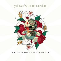 Major League DJz, Abidoza – What's The Levol