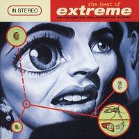 Přední strana obalu CD The Best Of Extreme (An Accidental Collication Of Atoms)