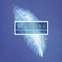 Choir of New College, Oxford, Edward Higginbottom – Bluebird - Music Of Contemplation