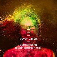 Steven Wilson – Permanating [Ewan Pearson Mix]