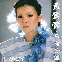 Tracy Huang – Tracy Huang / Zhi You Fen Li