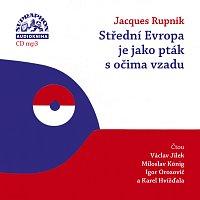 Rupnik: Střední Evropa je jako pták s očima vzadu