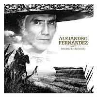 Přední strana obalu CD Hecho En México