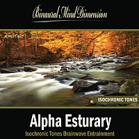 Hypnosis Audio Center – Alpha Esturary: Isochronic Tones Brainwave Entrainment