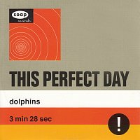 This Perfect Day – Dolphins