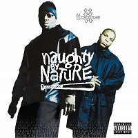 Naughty By Nature – Icons