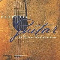 Různí interpreti – Essential Guitar [2 CDs]
