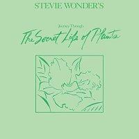Stevie Wonder – Journey Through The Secret Life Of Plants