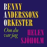 Benny Anderssons Orkester, Helen Sjoholm – Om du var jag