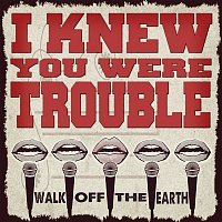 Walk Off The Earth, KRNFX – I Knew You Were Trouble
