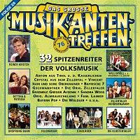 Různí interpreti – Das grosze Musikantentreffen - Folge 20