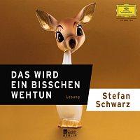 Stefan Schwarz – Das wird ein bisschen weh tun