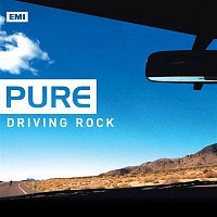 Billy Idol – Pure Driving Rock