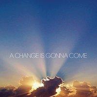 Různí interpreti – A Change Is Gonna Come [International Version (Double CD)]