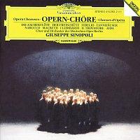 Volker Horn, Gerhard Schmuckert, Chor der Deutschen Oper Berlin, Giuseppe Sinopoli – Opera Choruses