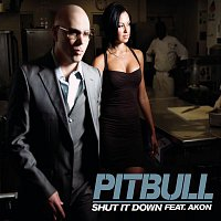 Pitbull, Akon – Shut It Down
