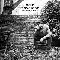 Odin Staveland – Mellom husene