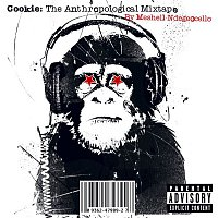 Meshell Ndegeocello – Cookie: The Anthropological Mixtape