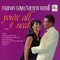 Marvin Gaye, Tammi Terrell – You're All I Need