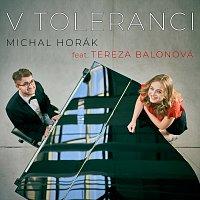 Přední strana obalu CD V toleranci (feat. Tereza Balonová)