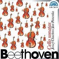 Beethoven: Sonáty pro violoncello a klavír