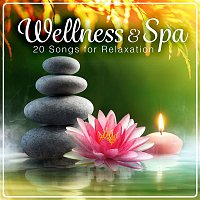 Axel Coon, Ralf Gobel – Wellness & Spa - 20 Songs for Relaxation