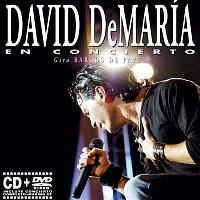 David DeMaría – En concierto