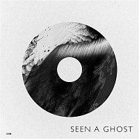 Old Sea Brigade – Seen a Ghost
